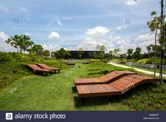 rooftop grass garden - Google Search Outdoor Furniture, Outdoor Decor, Rooftop, Sun Lounger, Grass, Golf Courses, Google Search, Garden, Rooftops