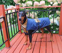 Dog Raincoat DURANGOAZTEC in pistachio for large dogs