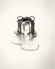 This amazingly creative photos are product of Spanish photographer called Chema Madoz. Jose Maria Rodriguez Madoz (born better known as Chema Object Photography, Conceptual Photography, Still Life Photography, Creative Photography, Nature Photography, Fashion Photography, Black White Photos, Black And White Photography, Macro Fotografie