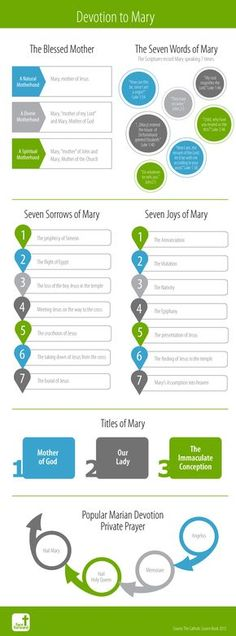 Devotion to Mary | The Blessed Mother | Catholic Infographic