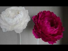 Crepe Paper Flowers Tutorial, Tissue Paper Flowers, Cloth Flowers, Paper Flower Backdrop, Giant Paper Flowers, Big Flowers, Paper Plants, Flower Video, Flower Crafts