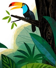 create a jungle backdrop using paper Sketch Manga, Charley Harper, Atelier D Art, Tropical Art, Bird Illustration, Gravure, Illustrations Posters, Nature Illustrations, Fabric Painting
