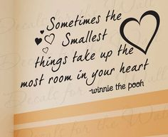 Sometimes Smallest Things Take Up Most Room Your Heart Winnie Pooh Girl Boy Room Kid Baby Nursery Vinyl Quote Wall Decal Sticker Art B32 via Etsy