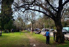 #EstaciónRanelagh #parqueevahajduk #ranelaghparque en el año 2020 Aqui se ve COMO LOS RANELANENSES HAN TOMADO EL PARQUE DESPUES DE MUCHO TIEMPO DE ENCIERRO Berazategui zona sur de Buenos Aires - trabajos fotograficos de DIAZ DE VIVAR GUSTAVO Dolores Park, Travel, Buenos Aires, Parks, Cities, Pictures, Viajes, Trips, Tourism
