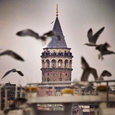 GALATA TOWER. emrkrm @emrkrm Instagram photos. Thank you to Ugur Soyata for sharing this wonderful photo. (Armada Hotel)