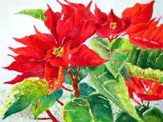 Christmas Poinsettias original watercolor painting by PatChoffrut, $125.00