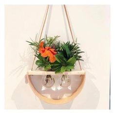 1/2 Moon Double Round | Hanging Vase