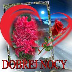 Good Night, Good Morning, Neon Signs, Plants, Nighty Night, Buen Dia, Bonjour, Bom Dia, Planters