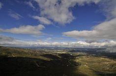 Olhares.com Fotografia   �Pinhas Pinheiro   tocando as nuvens...