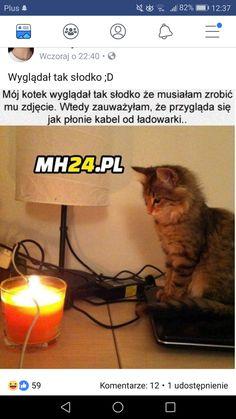 Wtf Funny, Funny Memes, Jokes, Polish Memes, My Memory, Funny Pins, Creepypasta, Best Memes, Really Funny