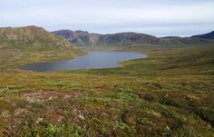 Gregor Samsa posted a photo:  Roughly 100 km north of the polar circle in southwest Greenland lies the Arctic Circle Trail. This long distance trail stretches for 170 km from the international airport of Greenland in Kangerlussuaq to Greenland's second largest city Sisimiut. During the summer months from June to September, the trail is free of snow and offers a spectacular hike from the inland to Greenland's coast. Except for a few cabins and one bridge over the biggest river the trail…