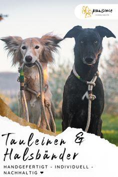 Gestalte deine individuelle Tauleine und dein Halsband für deinen Hund - wir fertigen es nach Maß und senden es dir plastikfrei zu!    Hundezubehör nachhaltig   Tauleine Kletterseil   Tauhalsband Hund   Hundezubehör natürlich   Handgefertigtes Hundezubehör Goats, Horses, Animals, Dog Accessories, Climbing Rope, Dog Care, Cats, Bunnies, Dog Leash