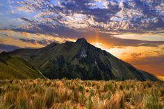 The Majestic Ecuadorian Paramo by Laura Travels, via Flickr