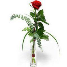 Send Flowers to Frankfurt am Main ⋆ Fast Delivery ⋆ FloraQueen - FloraQueen
