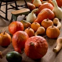 Garden Thyme - Cooking with Cucurbits | Old Sturbridge Village