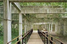 """Parque da Juventude, projeto de Rosa Kliass. Exposição """"Razão e Ambiente""""br /Foto Nelson Kon"""