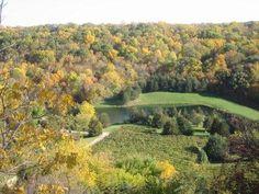 Northern Illinois #Wine Trail