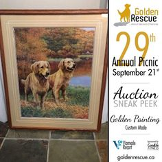 Picnic Auction Sneak Peek! This beautiful painting was generously donated by Cherie Barlow and is another one of the awesome items up for auction at this year's picnic. Make sure you're there so you don't miss out! ***If you are bringing an auction item to the picnic, please email sa@goldenrescue.ca with the information. We need to ensure we have this information ahead of time so that we can have the bid sheets ready and items listed on the auction list. Thank you!!*** For more information… Auction Items, Cool Items, Beautiful Paintings, Life Is Good, Picnic, Awesome, Life Is Beautiful, Picnics, Beautiful Pictures