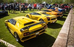 A suite of Lambos.