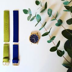 Love the scent of eucalyptus and these watches are inspired every bit as much by nature. Explore how on my blog > @grovecomms