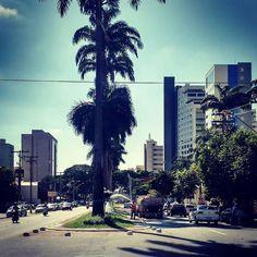 Enquanto isso em Goiânia nada de crise. Trocamos a grama de um monte de praças dos setores nobres por uma menos resistente agora regam tiririca. Talvez para combinar com as ervas daninhas que também crescem nas escolas e hospitais da periferia. Nosso dinheiro sendo administrado com o mais alto nível de incompetência. #goiania #goianiawalk #planejamentozero #umdiaprestaremosconta by valdoilo http://ift.tt/1OJFk6p