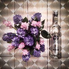 «В такой день -женщинам цветы,мужчинам водку,чтобы женщины казались еще прекраснее;))))) #подарокк8марта #beluga #сиреневыйбукетик»