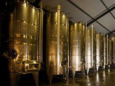 Wines, Vineyard, Amp, Business, Vine Yard, Vineyard Vines, Store, Business Illustration
