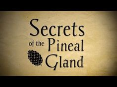 Awaken your pineal gland and connect with higher wisdom with Pineal Awakening from Subtle Energy! This pineal activation app is available for many devices. Psychic Development, Spiritual Development, Pineal Gland Facts, Pituitary Gland, Spirit Science, Third Eye, Spiritual Awakening, Gaia, The Secret