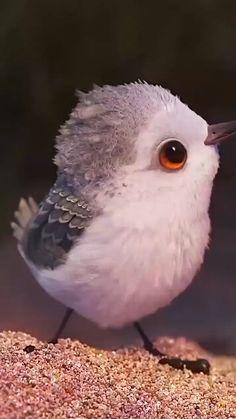 Baby Animals Super Cute, Cute Little Animals, Beautiful Photos Of Nature, Beautiful Birds, Cute Cartoon Pictures, Disney Princess Drawings, Aesthetic Photography Nature, Cute Pikachu, Anime Wallpaper Live