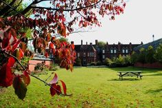 An Autumn shot of our garden here at the Museum of English Rural Life. Red leaves, green grass and bright skies.