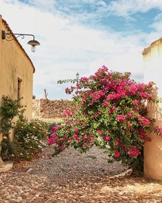 Beautiful Tratalias, Sardinia. Abandoned town. #Tratalias #Sulcis #Sardinia #beautifuldestinations Sardinia, Travel Guide, Abandoned, Track, Plants, Fun, Beautiful, Flare, Instagram