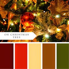 Christmas Color Palette - this with a dash of sparkly gold is basically what we've done for years!