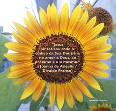 """Jesus sintetizou todo o código da Sua Doutrina no amor a Deus, ao próximo e a si mesmo."" (Joanna de Angelis / Divaldo Franco)"
