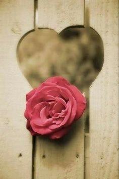 Compartilhando...: Quando Você Ama