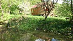 Vand Casa de vacanta + bazine piscicole Valea Inzelului - imagine 4