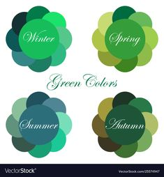 Stock vector seasonal color analysis palettes with green colors for Winter, Spri. - Stock vector seasonal color analysis palettes with green colors for Winter, Spring, Summer, Autumn. Deep Autumn Color Palette, Soft Summer Palette, Deep Winter Colors, Summer Colors, Green Colors, Cool Winter, Winter Typ, Color Me Beautiful, Color Type