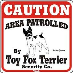 Toy Fox Terrier Sign $11.00