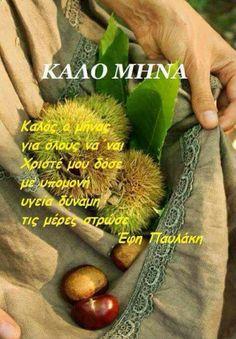 Mina, Herbs, Gifts, Presents, Herb, Favors, Gift, Medicinal Plants