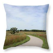 Winding Path Throw Pillow by Inspired Arts