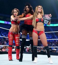 I love the Bella Twins ❤️❤️❤️and Alisha fox ask team Bella the Bella Twins r my idol and that r just so talented and I think that Nikki is a great divas champion and they r just they best #LOVE TEAM BELLA ❤️❤️❤️#TRAM BELLA ALL THE WAY ❤️❤️❤️