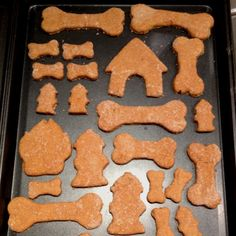 Cleo's Pumpkin Dog Biscuits 2 eggs 1/2 cup canned pumpkin 2 tablespoons dry milk 1/4 teaspoon sea salt 2 1/2 cups brown rice flour * 1 teaspoon dried parsley (optional)