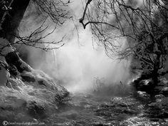 Light  Rain by  ♛MY~  SHOT         , via 500px