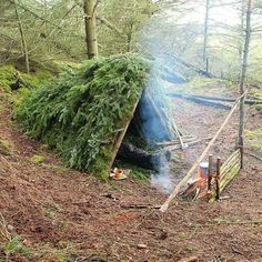 Using Leaves In The Forest For Shelter | 14 Survival Shelters You Can Build For Any Situation