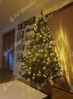 Ako ozdobiť vianočný stromček ? trendy pre rok 2020   Svet Stromčekov Trendy, Christmas Tree, Holiday Decor, Home Decor, Xmas, Teal Christmas Tree, Decoration Home, Room Decor, Xmas Trees