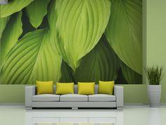 Verde succulente è il colore del 2017 secondo Pantone - per noi è un'ottima scelta #fotomurali #cartadaparati #decorazionemurale #decorazionimurali #pantone #verde #bimago #decorazioni #homedecor #verdesucculente #cartadaparativerde