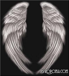 my next tatoo i want wings