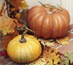 Faux Orange Pumpkins | Pottery Barn