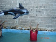 cuando fui a sea world! Baby Mouse, Mini Mouse, Fail Pictures, Funny Pictures, Disney Tutu, Free Willy, Picture Fails, Sea World, Country Of Origin