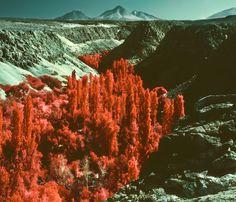 Atacama by Reuben Wu, via Behance