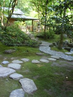pathways through moss - Portland Japanese Garden